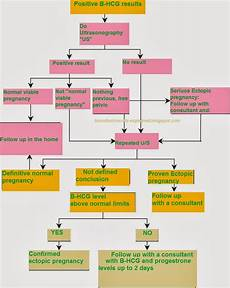 Beta Chart Hcg Levels During Pregnancy Ectopic Pregnancy And In