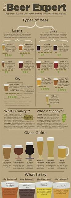 Craft Style Chart Infographic Provides Guidance For Non Craft Drinkers