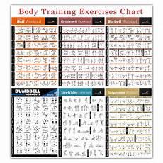Workout Chart For Gym Pdf Bodybuilding Gym Sport Fitness Dumbbell Poster Kettlebell