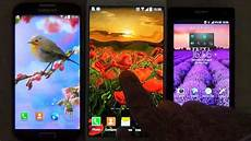 flower phone live wallpaper flowers live wallpaper for android phones and tablets