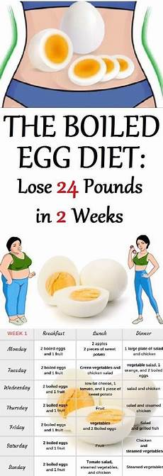 lose weight with egg diet healthy living wholesome recipes