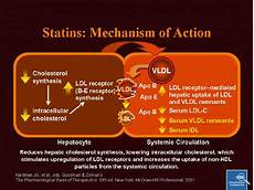 Statin Mechanism Of Action Clinical Science Investigations Csi Investigating