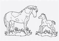 malvorlagen pferde a4 besten ausmalbilder within window