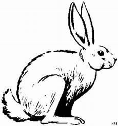 Malvorlagen Hasen Gratis Hase Klassisch Ausmalbild Malvorlage Tiere