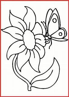 Schmetterling Ausmalbild Drucken Ausmalbilder Schmetterling Blume Rooms Project