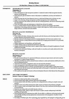 Resume Data Analysis Big Data Analyst Resume Samples Velvet Jobs