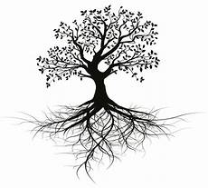 Tree Designs Tumblr I Will Give You Old Black Vector Tree With Root Design For