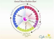 The Bump Ovulation Chart Ovulation Chart Cycle Harmony