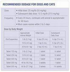 Methocarbamol For Dogs Dosage Chart 7 Best Chiapom Puppies Images Puppies Ready To Go Dog