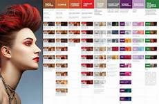 Pravana Hair Color Chart Pravana Chromasilk Vivids Amp Pastels Hair Color 3 Oz U