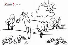 ausmalbild pferd 20 mit bildern ausmalbilder