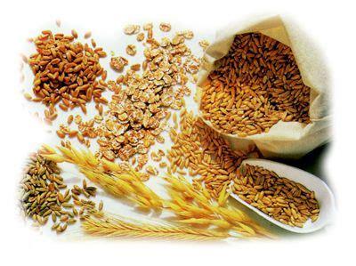 alimentazione senza carboidrati dieta senza carboidrati per chi vuole subito essere in