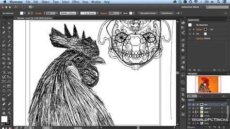 Jasa Install Adobe Cs6 Cc 2015 adobe illustrator cc 2015 free global