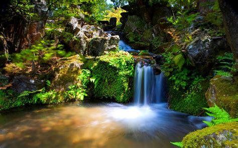 Natürliche Gärten by Die 72 Besten Sch 246 Ne Hintergrundbilder Mit Landschaft