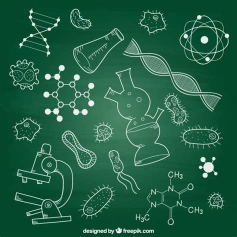 vector background ndebele artwork biology vectors photos and psd files free download