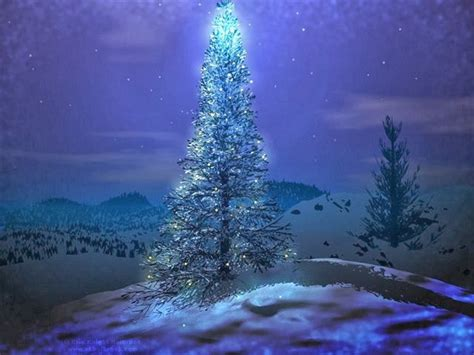 tapandaola111 beautiful christmas tree wallpapers hd
