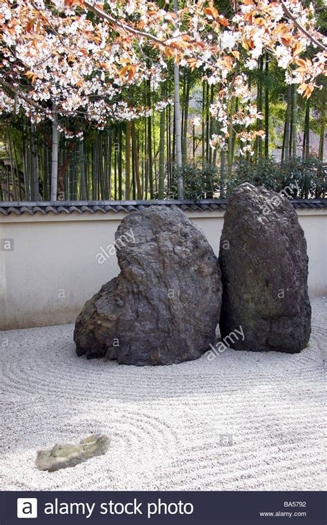japanese zen rock garden japanese zen rock garden with cherry blossom and