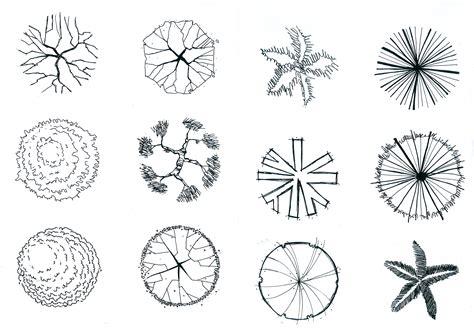 symbolism trees tree symbol drawing idea make me happy