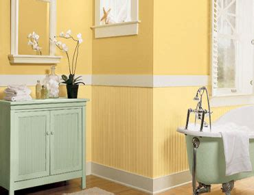 Paint Ideas For Bathroom Walls Painterclick Painting Tips Ideas Bathroom
