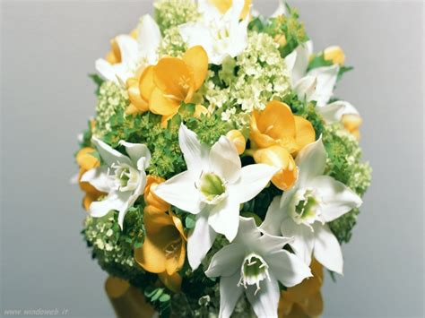 foto fi fiori foto fiori bouquet