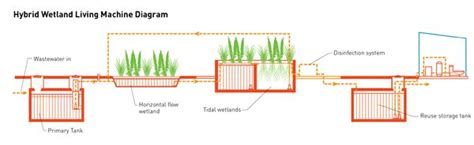 design criteria of a constructed wetlands constructed wetland wastewater treatment systems