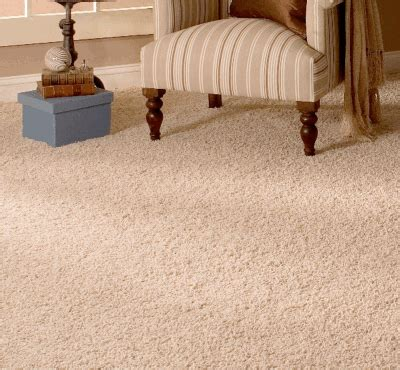 www carpet rug org floor to your door everything you need to carpet pad