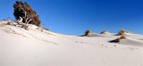 le dune porto pino le dune sardegnaturismo sito ufficiale turismo