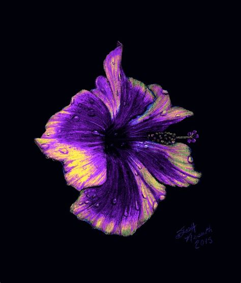 flower design using colored paper purple hibiscus in colored pencil on black paper art