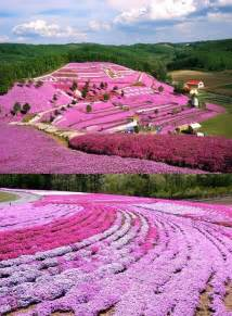 Flower Garden Japan Gardens Beautiful And Travel Inspiration On