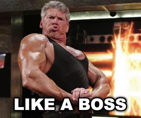 Funny Wrestling Memes - wwe memes