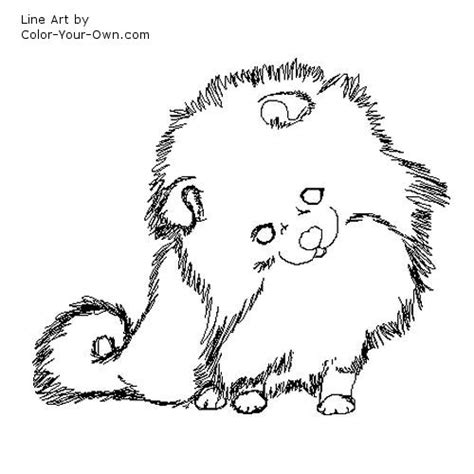 coloring pages of maltese puppies pomeranian coloring pages image puppies pc android iphone