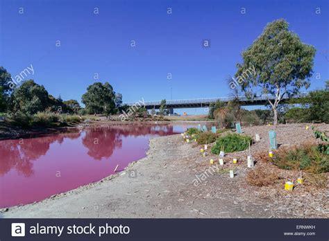 pink lake melbourne pink lake westgate park port melbourne melbourne