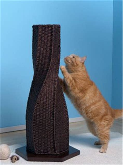 calypso cat scratching post living with cats