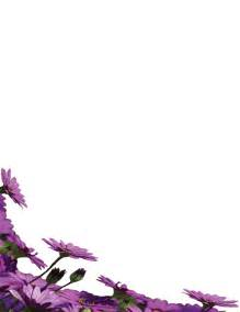 border flower search results calendar 2015