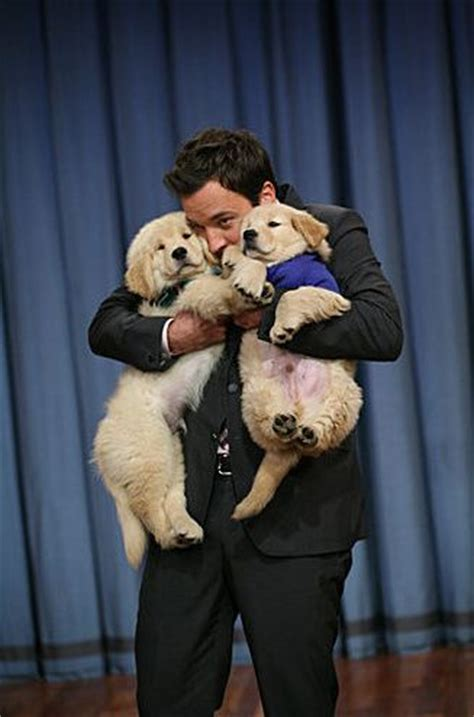 jimmy fallon puppies jimmy fallon and puppies the show my my and so