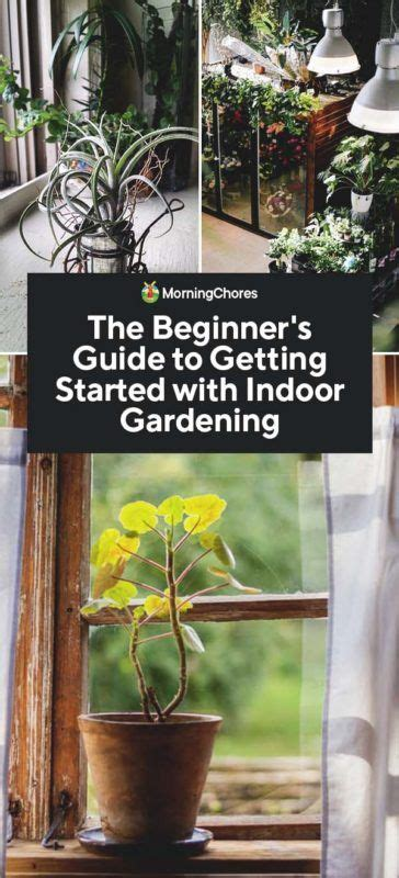 beginners guide   started  indoor