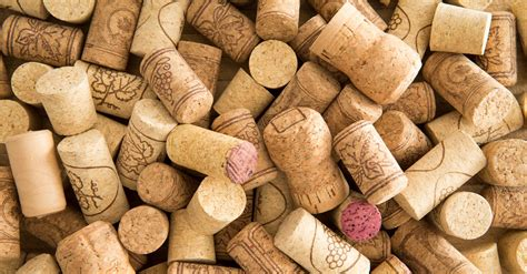 Large 19 Quot Wine Cork Turn Your Corks Into The Bottles Vinepair