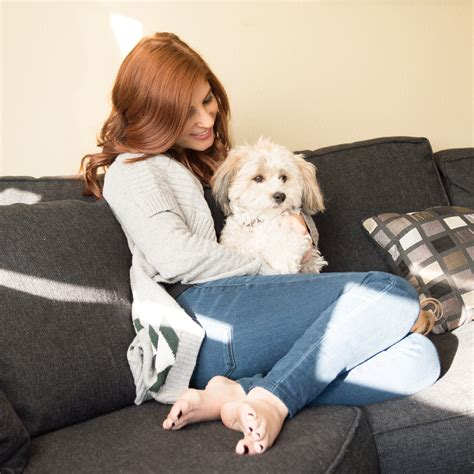 snuggling on the couch the best sweaters for snuggling up on the couch they re