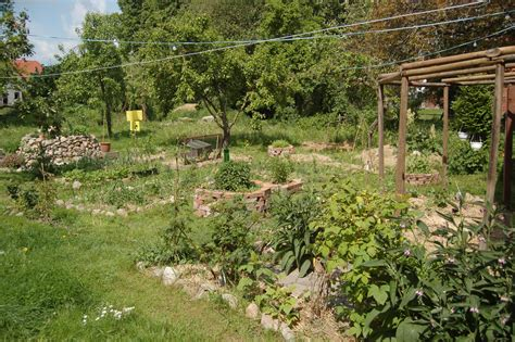 backyard permaculture file permaculture garden jpg wikimedia commons