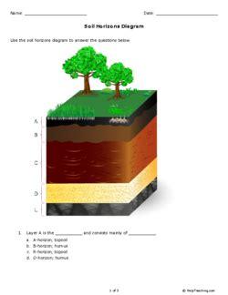 soil horizons diagram soil horizons worksheet www pixshark images