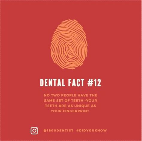 291 best teeth smile facts images on
