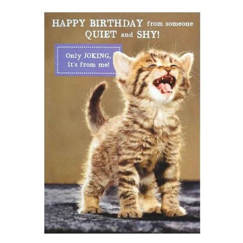 printable birthday cards with cats card invitation design ideas quiet and shy cat birthday