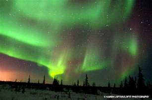 churchill canada where the northern lights delight