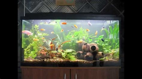 fish decorations for home aquarium decoration ideas youtube diy aquarium
