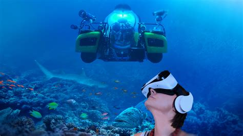 dive great barrier reef reality experiences solutions