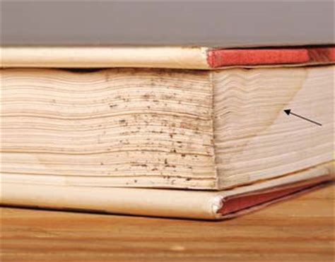 artistic guide to molds with urethane books books bad studies