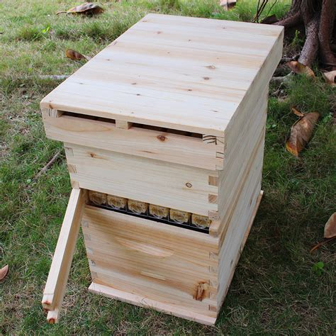 keeping organized a hive wood removeable wooden beehive box house hive boxes bee keeping