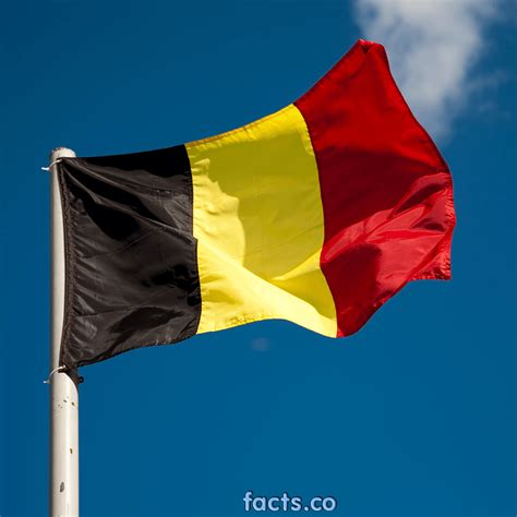 flag of image flag of belgium the symbol of independence pictures