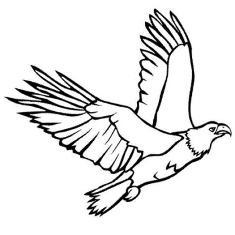 imagenes de aguilas faciles para dibujar aguila dibujo volando imagui