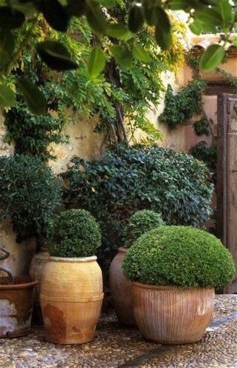 Terra Gardens by Boxwood In Terra Cotta Pots Garden